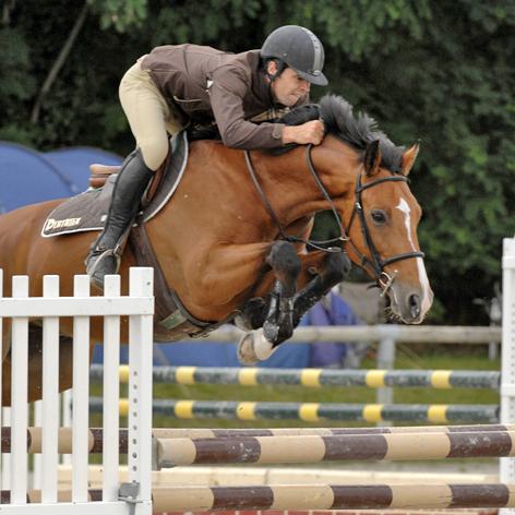 photo cheval cso