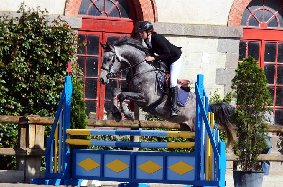 Actualités André Sport Equestre (archives 1er semestre 2014)